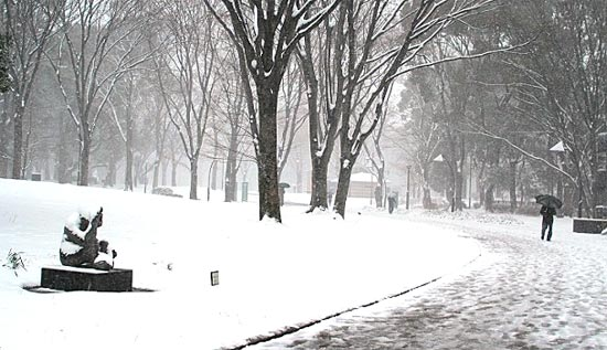 今日みたいな雪の写真、Google+「おまかせビジュアル」でさらにしつこく雪を降らせよう!