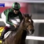 ジェンティルドンナとジャスタウェイ、ドバイミーティングで日本馬が2勝!