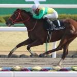 [競馬予想] 東海S・浜中騎手の乗り替わりでこの馬がチャンス!