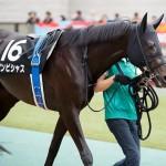 [競馬予想] 大阪杯・ダービー卿CT、軽量斤量そして2番人気を本命