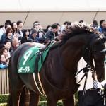 [競馬予想] NHKマイルカップ、やっぱり共同通信杯組は強かったという結果に?!
