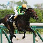 [競馬予想] 混戦の安田記念、上位人気馬をばっさり切る!