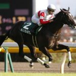 [競馬予想] 平成最後の日本ダービー、プレミアムな馬が締めくくる!